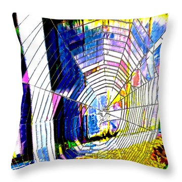 The Refracted Cobweb Throw Pillow by Steve Taylor