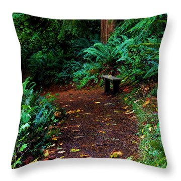 The Right Path Throw Pillow by Jeanette C Landstrom