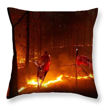 The Ring Of Fire Throw Pillow by Bill Stephens