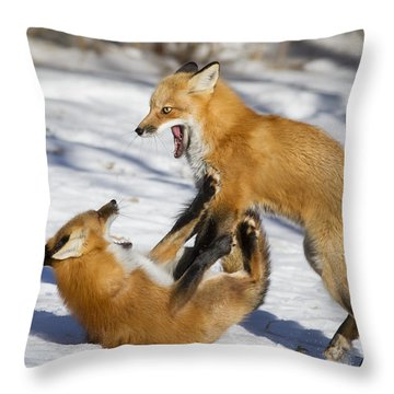 The Rivals Throw Pillow by Mircea Costina Photography