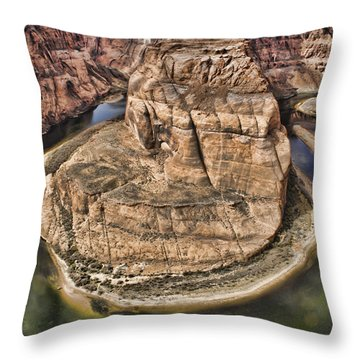 The River Did It Throw Pillow by Heather Applegate