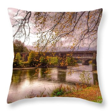 The Riverside At Avenham Park Throw Pillow