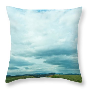 The Road Ahead Throw Pillow by Lena Wilhite