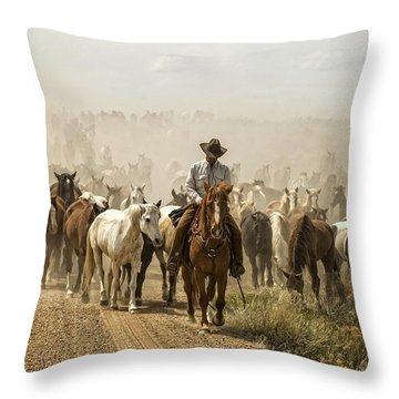 The Road Home 2013 Throw Pillow