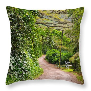 The Road Less Traveled Throw Pillow by Denise Bird