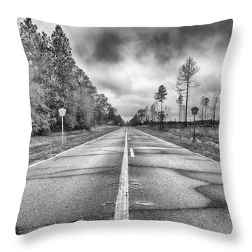The Road Less Traveled Throw Pillow by Howard Salmon