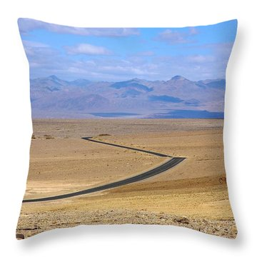 Throw Pillow featuring the photograph The Road by Stuart Litoff