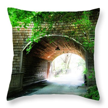 The Road To Beyond Throw Pillow by Shawn Dall