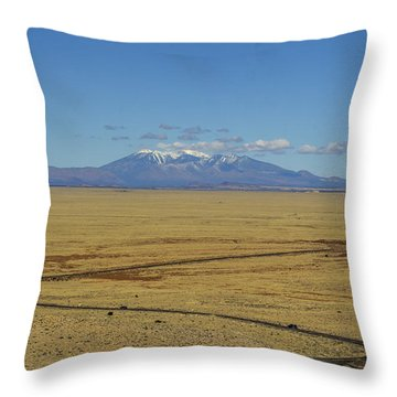 The Road To Flagstaff Throw Pillow