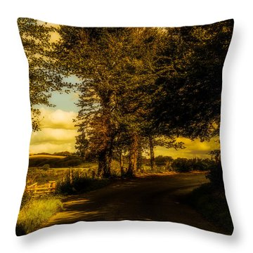 Throw Pillow featuring the photograph The Road To Litlington by Chris Lord