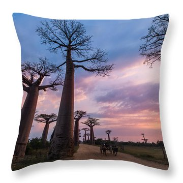The Road To Morondava Throw Pillow