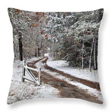 The Road To The River Throw Pillow by Michelle Wiarda