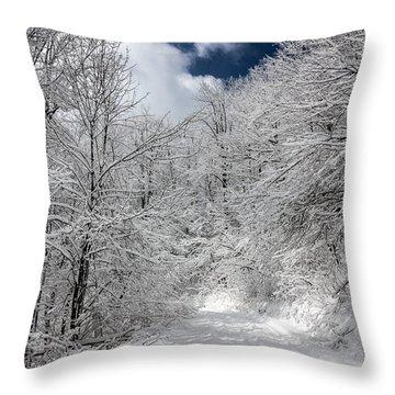The Road To Winter Wonderland Throw Pillow by John Haldane