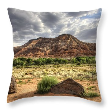 Throw Pillow featuring the photograph The Road To Zion by Tammy Wetzel