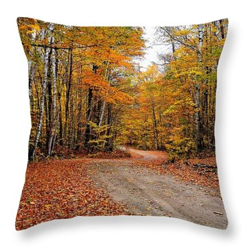 The Road We Take Throw Pillow