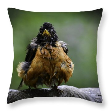 The Robin At 6-58 A.m. Throw Pillow
