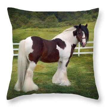 The Rock Throw Pillow by Fran J Scott