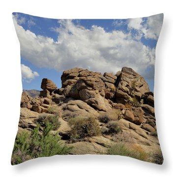 The Rock Garden Throw Pillow by Michael Pickett