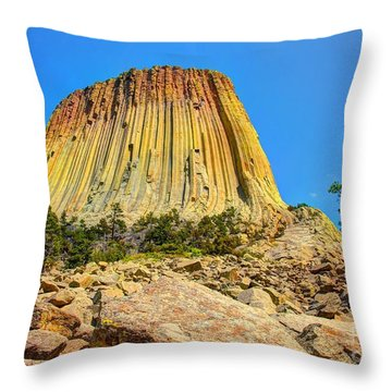The Rock Shop Throw Pillow