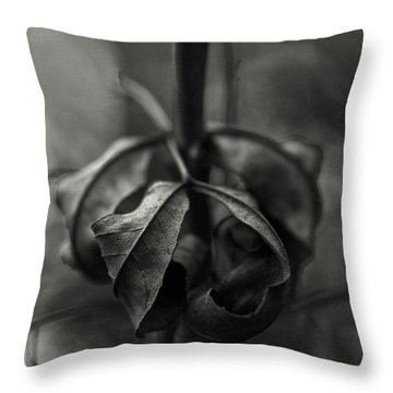 The Rolled Leaf Throw Pillow by Andreas Levi