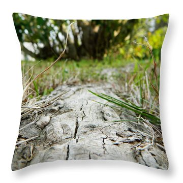 The Root Of Happiness Throw Pillow by Andrea Anderegg