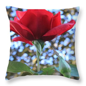 The Rose And Bud Throw Pillow