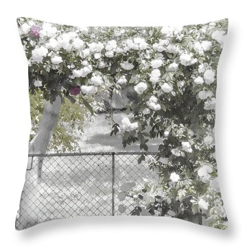 Throw Pillow featuring the photograph The Rose Arbor by Elaine Teague