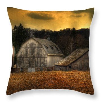 The Rose Farm Throw Pillow by Thomas Young