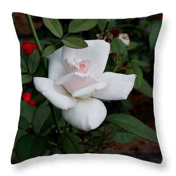 Throw Pillow featuring the photograph The Rose by James C Thomas