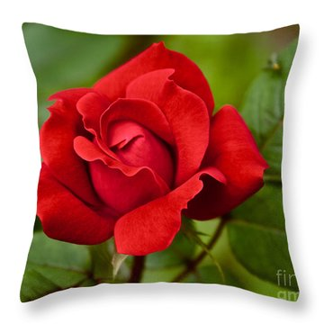 Throw Pillow featuring the photograph The Rose by William Norton