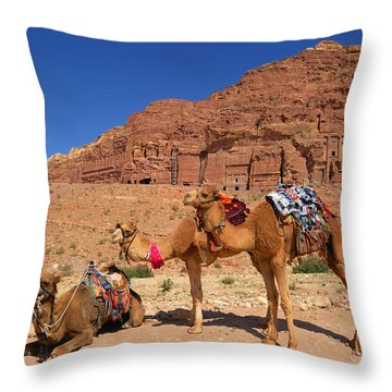 The Royal Tombs Throw Pillow by Tony Beck