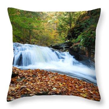 The Rushing Waterfall Throw Pillow