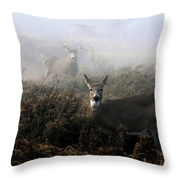 Buck Throw Pillows