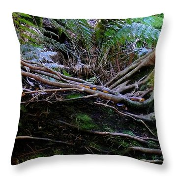 Throw Pillow featuring the photograph The Salamander Tree by Evelyn Tambour