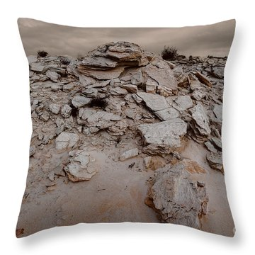 The Sands Of Time 5 Throw Pillow