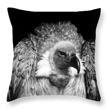 The Scavenger Throw Pillow by Chris Whittle