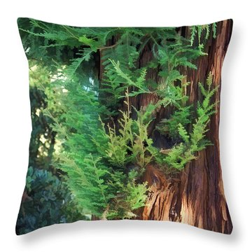 The Scent Of Cedar Throw Pillow