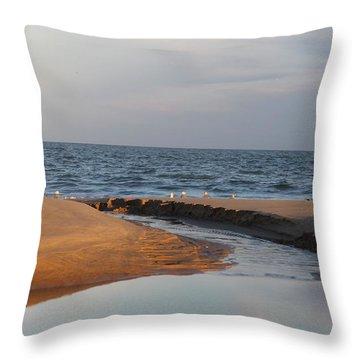 The Sea Overcomes Throw Pillow by Robert Banach