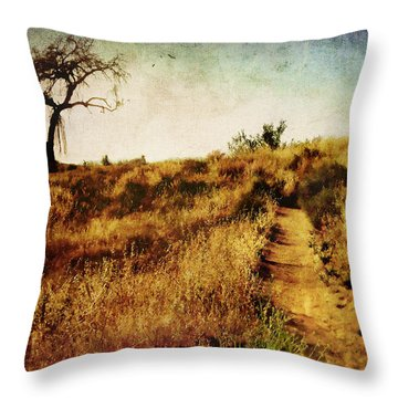 The Secret Pathway To Aspiration Throw Pillow by Brett Pfister