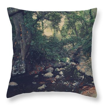 The Secret Spot Throw Pillow by Laurie Search