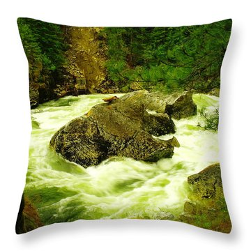 The Selway River Throw Pillow by Jeff Swan