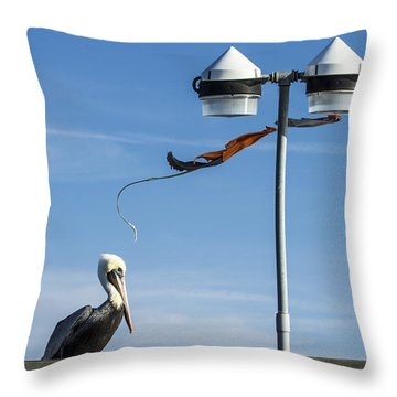 Throw Pillow featuring the photograph The Sentinel by Phil Mancuso