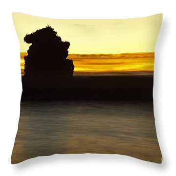 Throw Pillow featuring the photograph The Sentinel by Terry Garvin