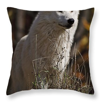 Throw Pillow featuring the photograph The Sentinel by Wolves Only