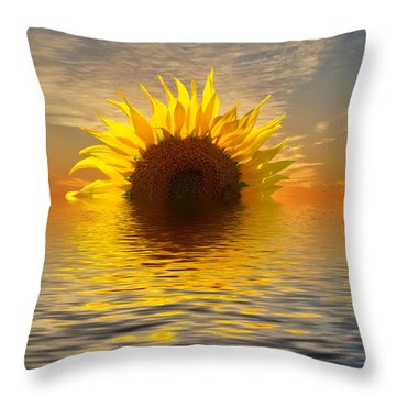 The Setting Sun-flower 2 Throw Pillow by Geraldine Alexander