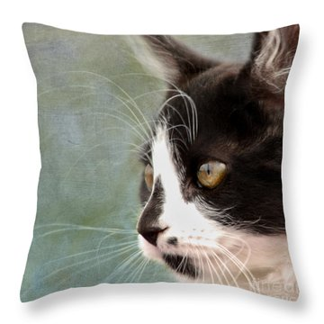 The Ships Cat Throw Pillow