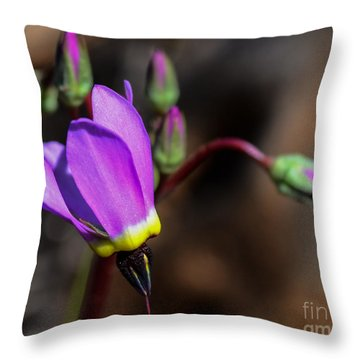 The Shooting Star Wildflower Throw Pillow