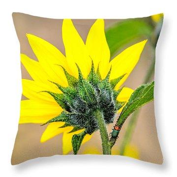 The Side Often Overlooked Throw Pillow by Debra Martz