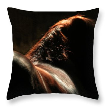 The Silhouette Throw Pillow by Angel  Tarantella