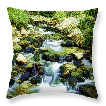 The Silk Road Throw Pillow